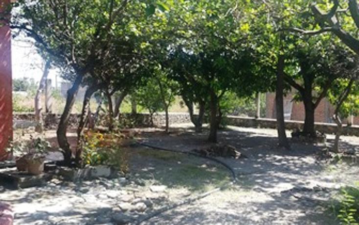 Foto de casa en venta en carretera al piane 0, el rodeo, miacatlán, morelos, 2651060 No. 08