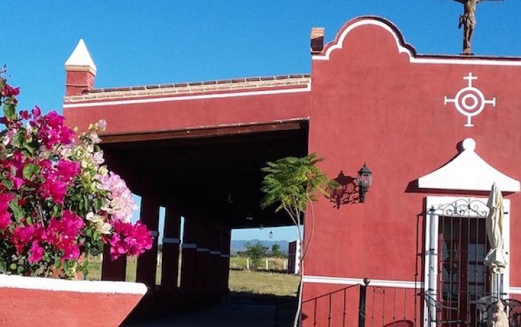 Foto de rancho en venta en carretera al pueblo de tenango, amayuca, jantetelco, morelos, 1637158 no 04
