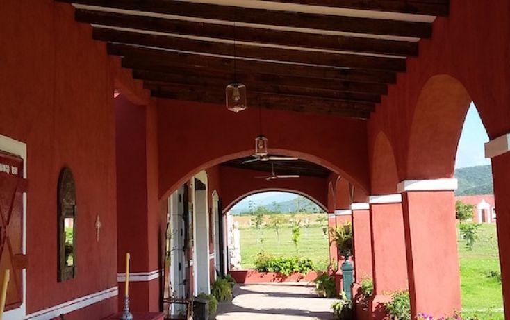 Foto de rancho en venta en carretera al pueblo de tenango, amayuca, jantetelco, morelos, 1637158 no 08