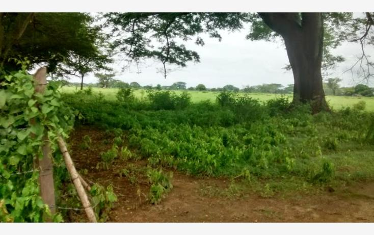 Foto de terreno industrial en venta en  , agua fría, villa comaltitlán, chiapas, 3433954 No. 02
