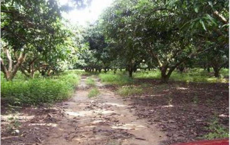 Foto de terreno habitacional en venta en carretera bolulevard pinotepa 1, amatillo, acapulco de juárez, guerrero, 1782186 no 06