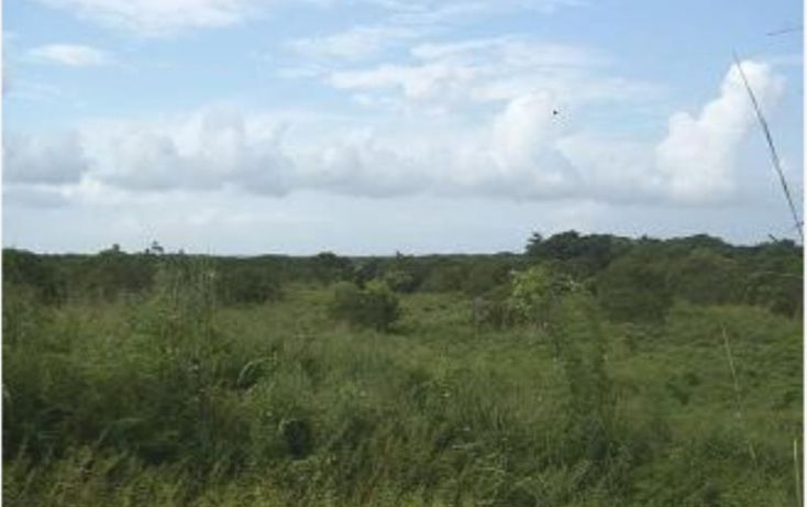 Foto de terreno habitacional en venta en carretera bolulevard pinotepa 1, amatillo, acapulco de juárez, guerrero, 1782186 no 08