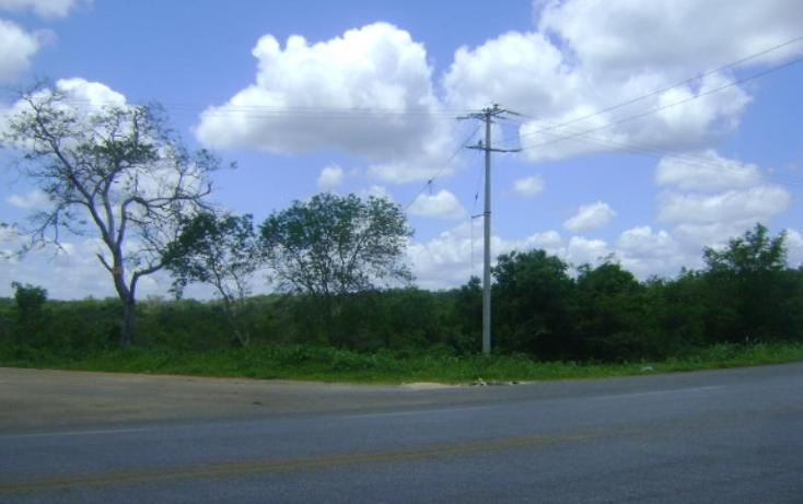 Foto de terreno comercial en venta en carretera camp-merida km59, san pedro, tenabo, campeche, 1388127 No. 03