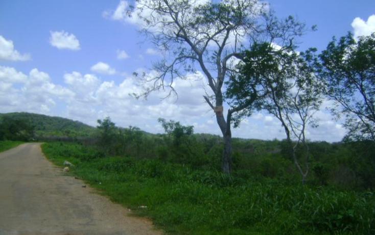 Foto de terreno comercial en venta en carretera camp-merida km59, san pedro, tenabo, campeche, 1388127 No. 05