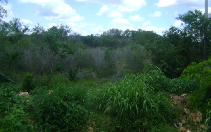Foto de terreno comercial en venta en carretera camp-merida km59, san pedro, tenabo, campeche, 1388127 No. 06