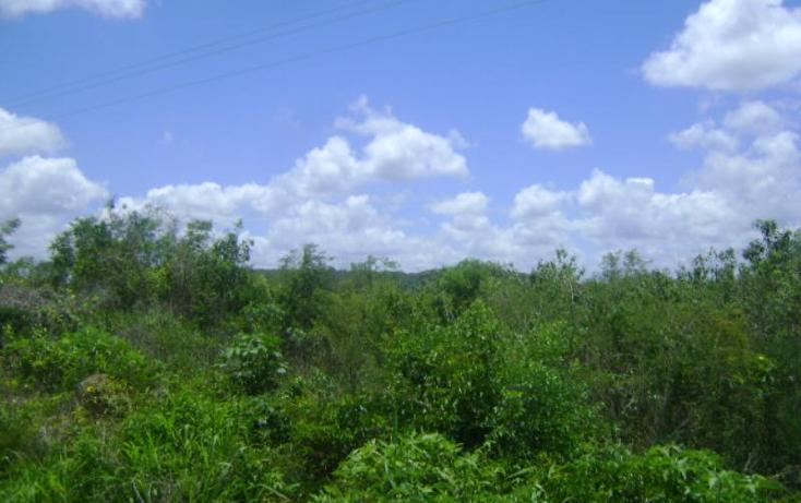 Foto de terreno comercial en venta en carretera camp-merida km59, san pedro, tenabo, campeche, 1388127 No. 07
