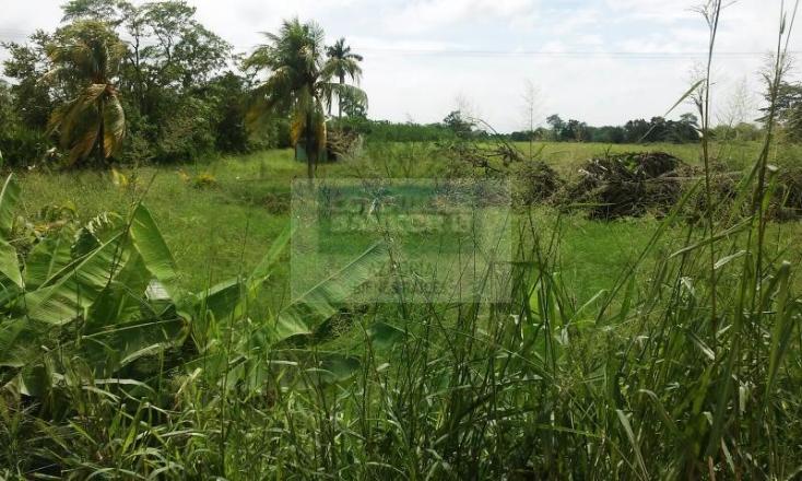 Foto de terreno habitacional en venta en carretera cárdenas - villahermosa , plátano y cacao 2a secc, centro, tabasco, 1618508 No. 03