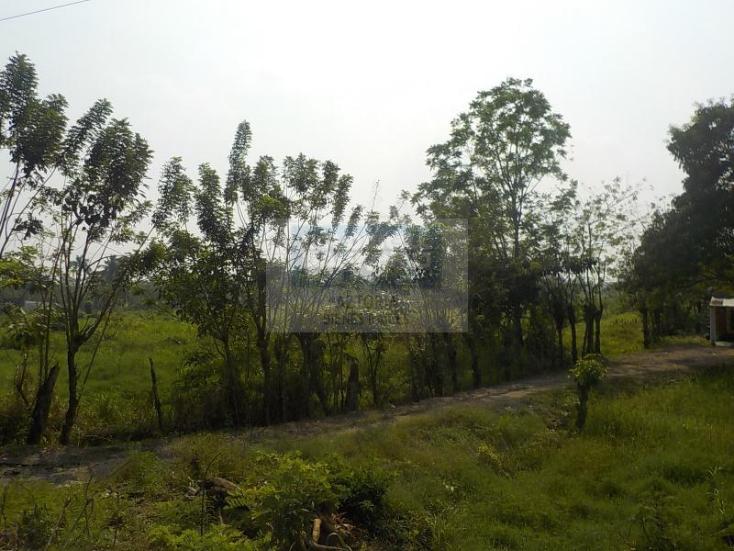 Foto de terreno habitacional en venta en carretera cárdenas - villahermosa , plátano y cacao 2a secc, centro, tabasco, 1618508 No. 04