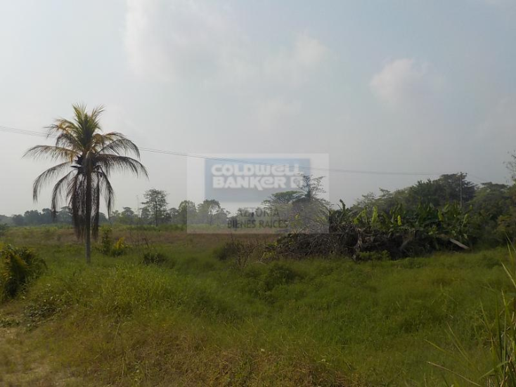Foto de terreno habitacional en venta en carretera cárdenas - villahermosa , plátano y cacao 2a secc, centro, tabasco, 1618508 No. 05