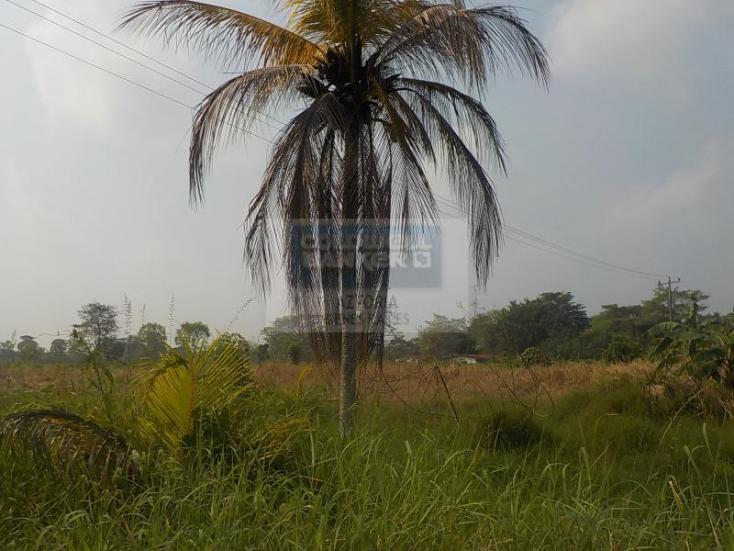 Foto de terreno habitacional en venta en carretera cárdenas - villahermosa , plátano y cacao 2a secc, centro, tabasco, 1618508 No. 06