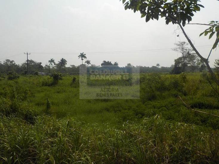Foto de terreno habitacional en venta en carretera cárdenas - villahermosa , plátano y cacao 2a secc, centro, tabasco, 1618508 No. 07