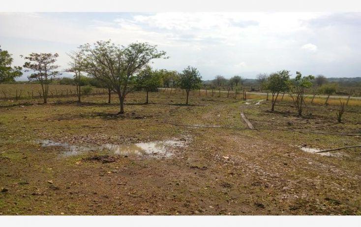 Foto de rancho en venta en carretera cardona, cardona, colima, colima, 2027170 no 11