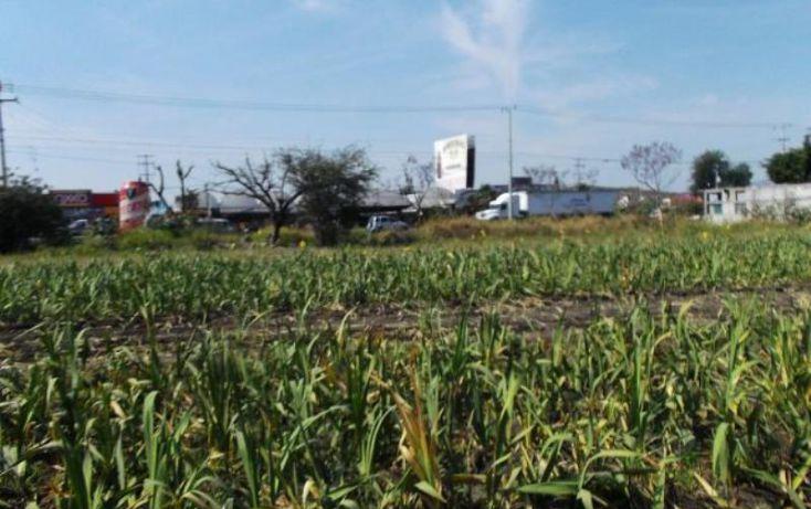 Foto de terreno habitacional en venta en carretera cocoyocsan carlos, cuauhtémoc, yautepec, morelos, 1751398 no 01