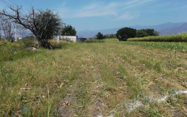 Foto de terreno habitacional en venta en carretera cocoyocsan carlos, cuauhtémoc, yautepec, morelos, 1751398 no 02