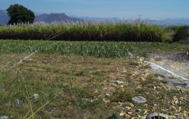 Foto de terreno habitacional en venta en carretera cocoyocsan carlos, cuauhtémoc, yautepec, morelos, 1751398 no 03