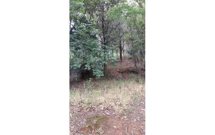 Foto de terreno habitacional en venta en  , teopisca, teopisca, chiapas, 1373569 No. 04