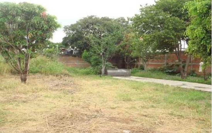 Foto de terreno habitacional en venta en carretera cuautla - izucar de matamoros , amayuca, jantetelco, morelos, 86659 No. 06