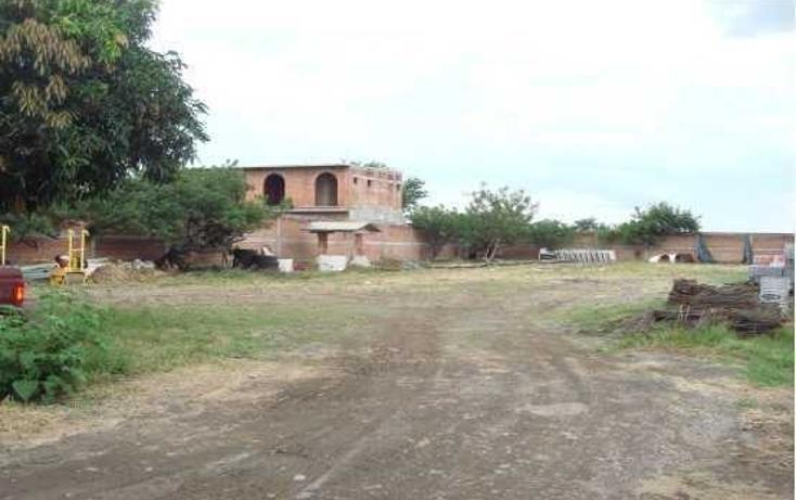 Foto de terreno habitacional en venta en carretera cuautla - izucar de matamoros , amayuca, jantetelco, morelos, 86659 No. 08