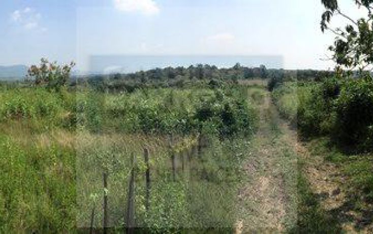 Foto de terreno habitacional en venta en carretera cuernavaca tepoztlan, tepoztlán centro, tepoztlán, morelos, 1414267 no 06