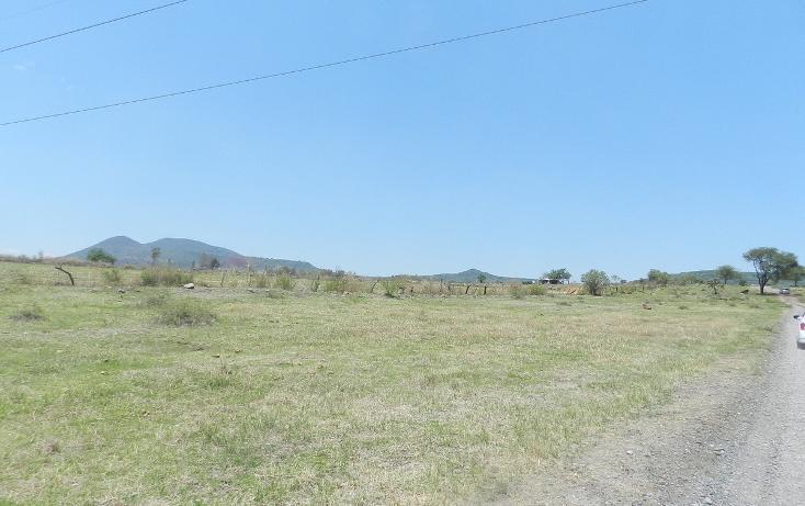 Foto de terreno habitacional en venta en carretera el salto jalisco la purisima s/n el laurel , la purísima, tlajomulco de zúñiga, jalisco, 3423511 No. 14