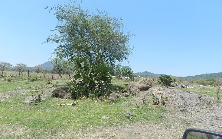 Foto de terreno habitacional en venta en carretera el salto jalisco la purisima s/n el laurel , la purísima, tlajomulco de zúñiga, jalisco, 3423511 No. 18