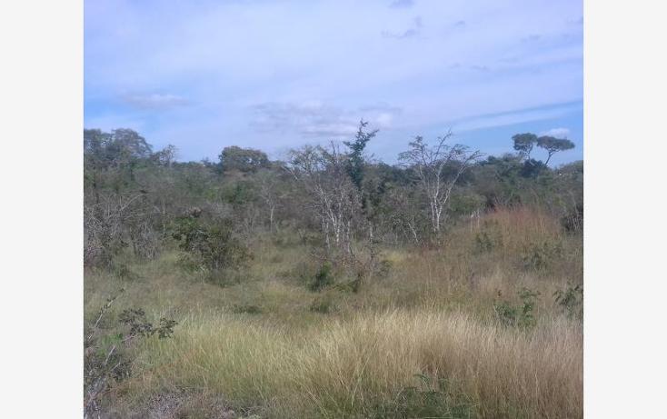 Foto de rancho en venta en carretera emiliano zapata nonumber, vicente guerrero, ocozocoautla de espinosa, chiapas, 2005650 No. 02
