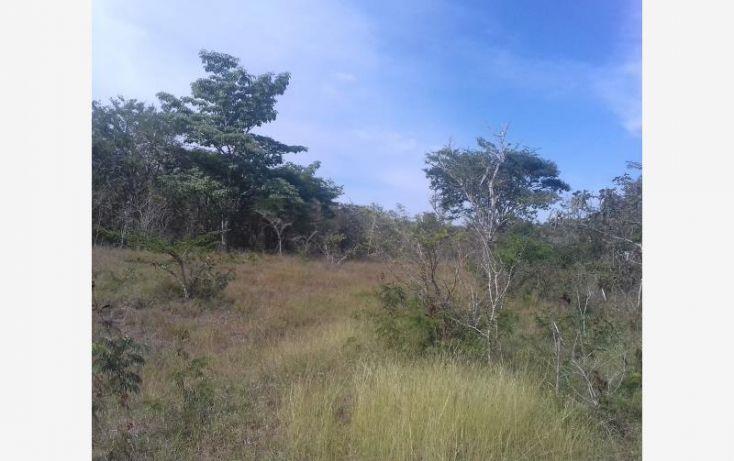 Foto de rancho en venta en carretera emiliano zapata, vicente guerrero, ocozocoautla de espinosa, chiapas, 2005650 no 01