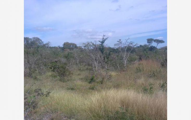 Foto de rancho en venta en carretera emiliano zapata, vicente guerrero, ocozocoautla de espinosa, chiapas, 2005650 no 02