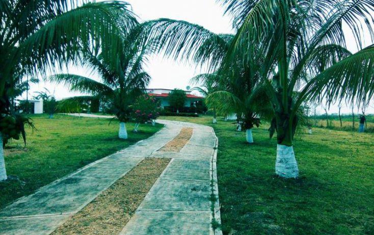Foto de rancho en venta en carretera estatal, tilapan, san andrés tuxtla, veracruz, 1806686 no 02
