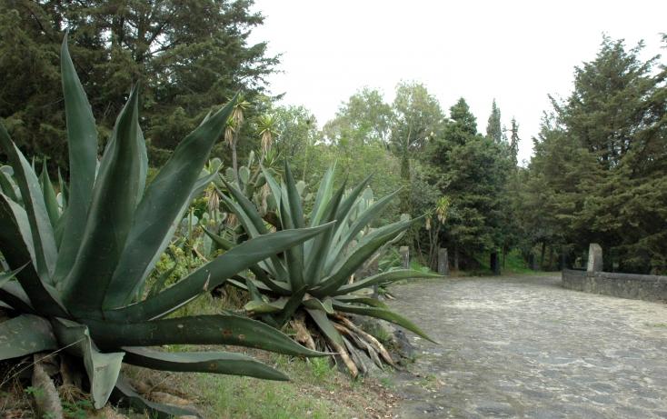 Foto de terreno habitacional en venta en carretera federa mexicocuernavaca, san miguel topilejo, tlalpan, df, 494312 no 06