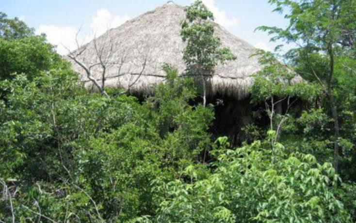 Foto de terreno comercial en venta en carretera federal 307, tulum centro, tulum, quintana roo, 1934660 no 02