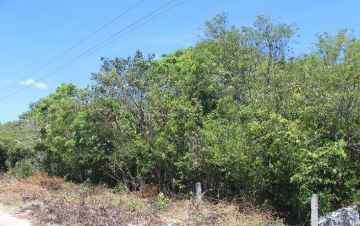 Foto de terreno comercial en venta en carretera federal 307, tulum centro, tulum, quintana roo, 1934660 no 15