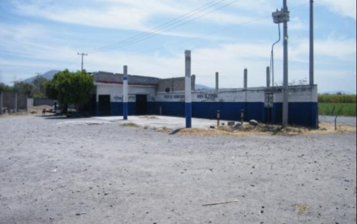 Foto de terreno comercial en venta en carretera federal 5, plan de ayala, zacatepec, morelos, 411901 no 05