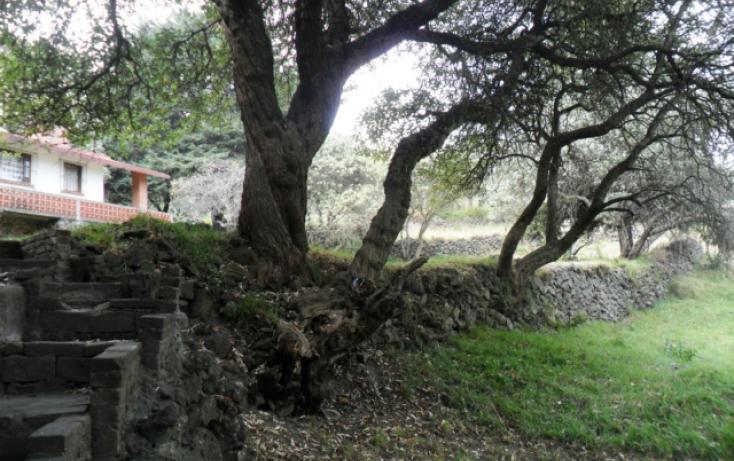 Foto de terreno habitacional en renta en carretera federal a cuernavaca, san miguel xicalco, tlalpan, df, 824099 no 07