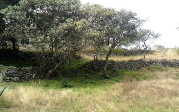 Foto de terreno habitacional en renta en carretera federal a cuernavaca, san miguel xicalco, tlalpan, df, 824099 no 13