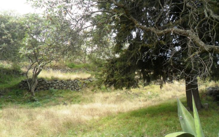 Foto de terreno habitacional en renta en carretera federal a cuernavaca, san miguel xicalco, tlalpan, df, 824099 no 16