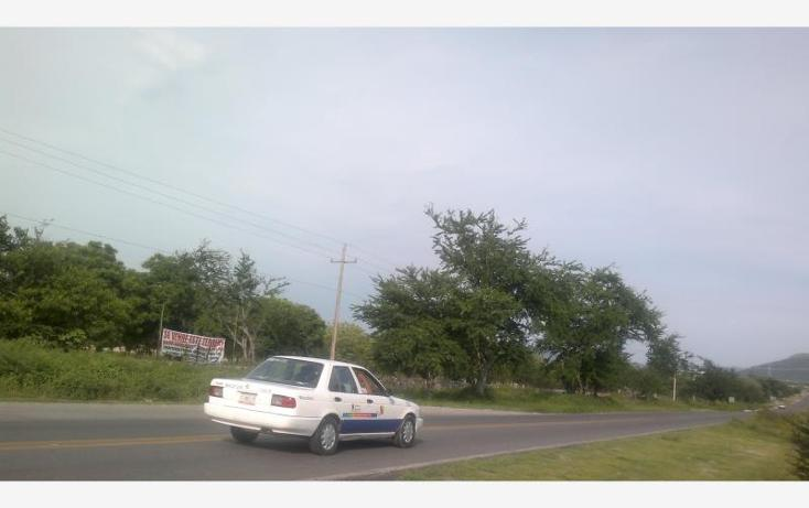 Foto de terreno comercial en venta en carretera federal alpuyeca a grutas kilometro 3.5, alpuyeca, xochitepec, morelos, 432902 No. 09