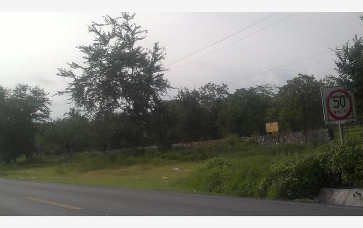 Foto de terreno comercial en venta en carretera federal alpuyeca a grutas kilometro 3.5, alpuyeca, xochitepec, morelos, 432902 No. 12