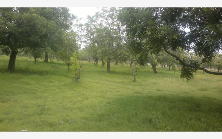 Foto de terreno comercial en venta en carretera federal alpuyeca a grutas kilometro 3.5, alpuyeca, xochitepec, morelos, 432902 No. 13
