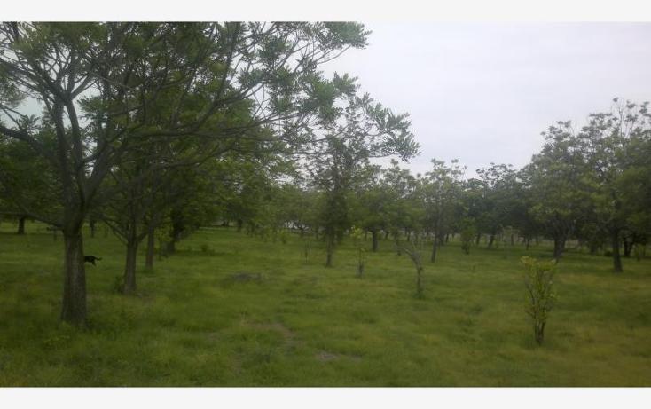 Foto de terreno comercial en venta en carretera federal alpuyeca a grutas kilometro 3.5, alpuyeca, xochitepec, morelos, 432902 No. 32