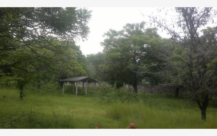 Foto de terreno comercial en venta en carretera federal alpuyeca a grutas kilometro 3.5, alpuyeca, xochitepec, morelos, 432902 No. 36