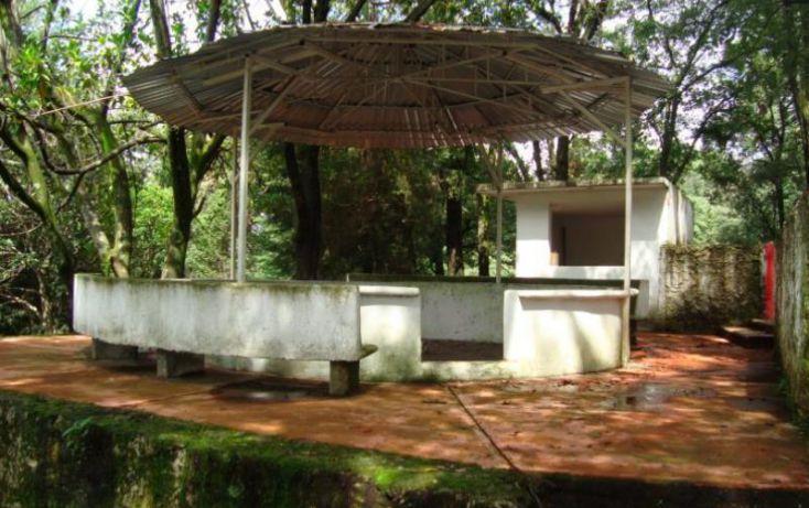 Foto de terreno comercial en venta en carretera federal cuernavaca méico, balcones de tepuente, cuernavaca, morelos, 1750676 no 06