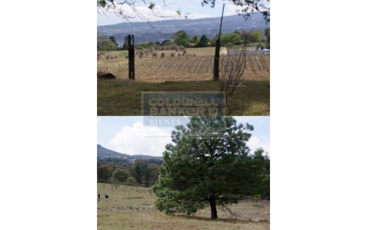 Foto de rancho en venta en  , san miguel topilejo, tlalpan, distrito federal, 1849422 No. 06