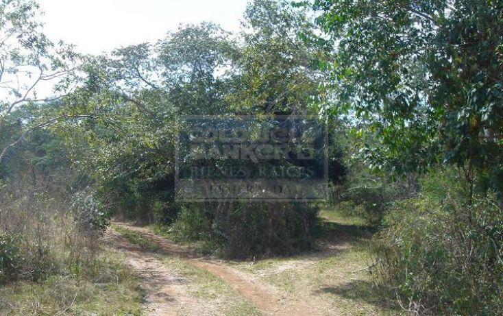 Foto de terreno habitacional en venta en carretera federal merida valladolid chichen itza , yucatan , quintana roo mexico, cancún centro, benito juárez, quintana roo, 682321 no 03