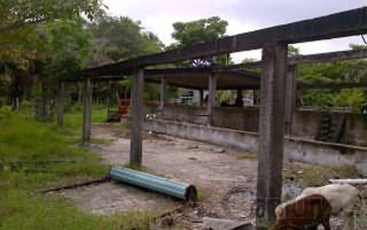 Foto de terreno habitacional en venta en  , paraíso centro, paraíso, tabasco, 1830538 No. 14