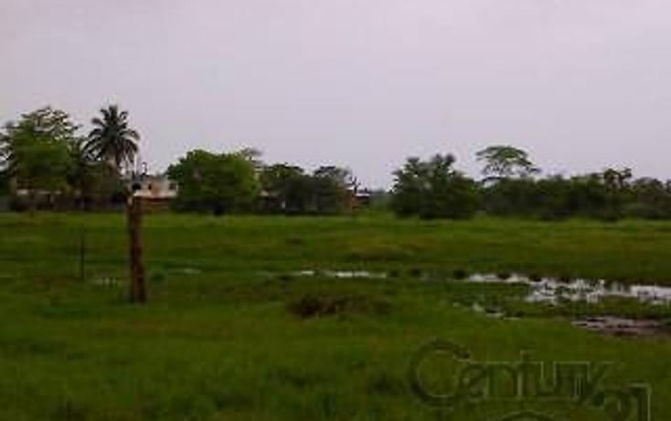 Foto de terreno habitacional en venta en  , paraíso centro, paraíso, tabasco, 1830538 No. 18