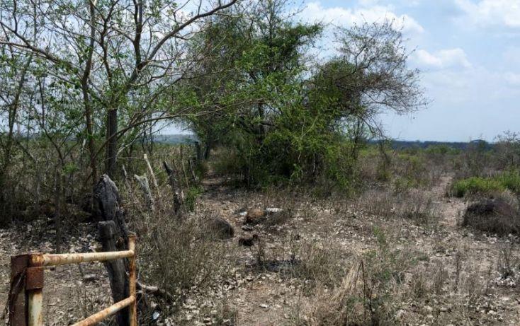 Foto de rancho en venta en carretera federal veracruz cordoba, la tinaja, cotaxtla, veracruz, 1675704 no 02
