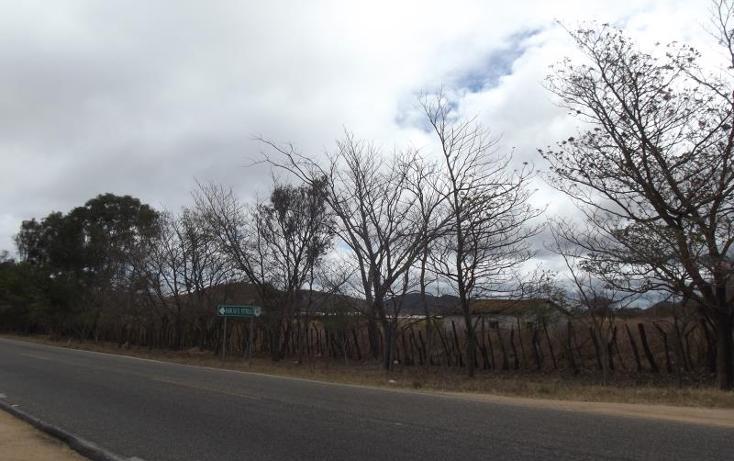 Foto de terreno industrial en venta en carretera internacional tramo cintalapa - tapanatepec kilometro 2+00 , san ricardo, cintalapa, chiapas, 1728358 No. 02