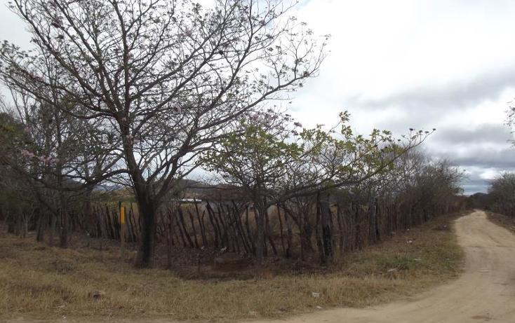 Foto de terreno industrial en venta en carretera internacional tramo cintalapa - tapanatepec kilometro 2+00 , san ricardo, cintalapa, chiapas, 1728358 No. 03