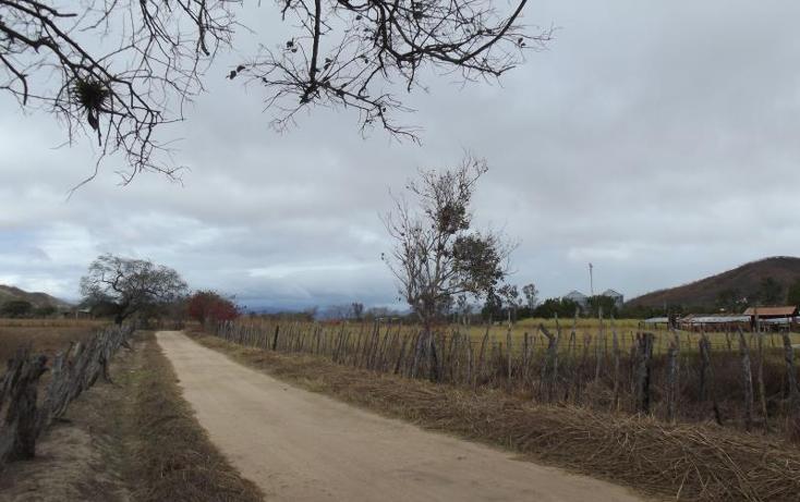 Foto de terreno industrial en venta en carretera internacional tramo cintalapa - tapanatepec kilometro 2+00 , san ricardo, cintalapa, chiapas, 1728358 No. 04